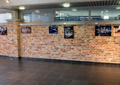 Lens op de Mens 2021 | Palethe | WPC - Team Belgium 2021